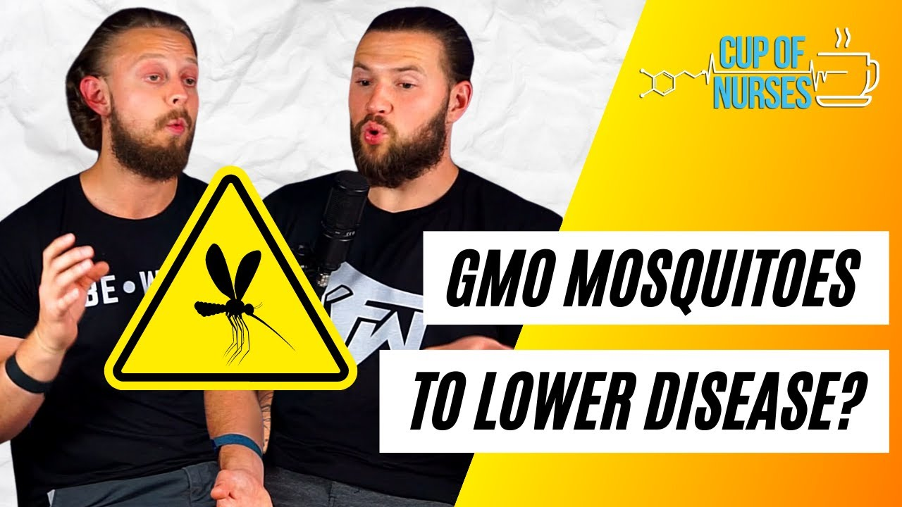 GMO Mosquitos and How the Gut Microbiome Influences Blood Pressure